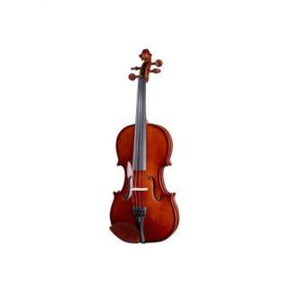 Violini & Viole